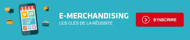 Formation e-Merchandising