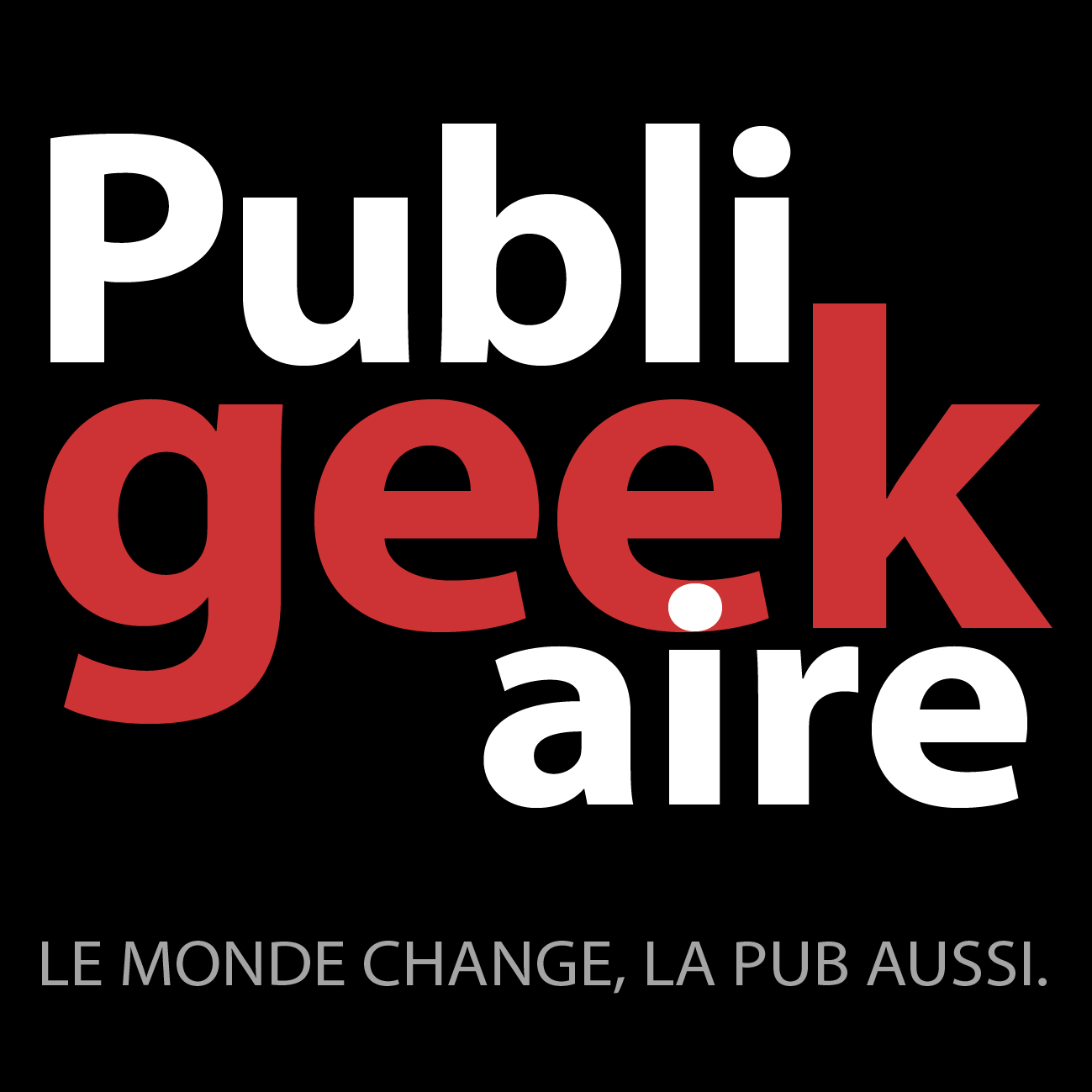 Publigeekaire