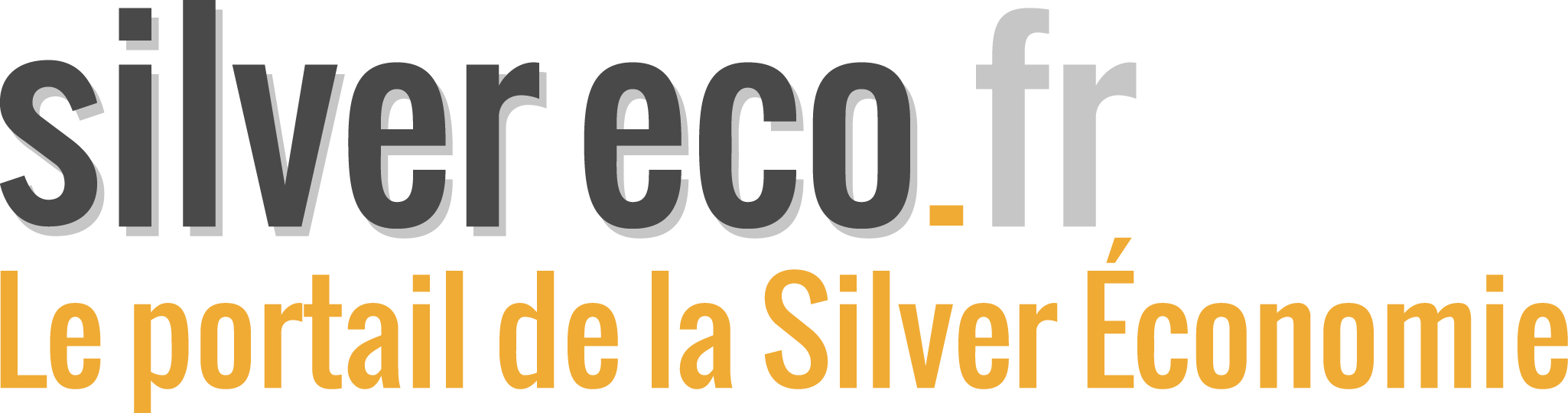 http://www.ccmbenchmark.com/image/partenaire/logo-silver-eco.fr.png